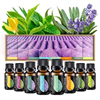 Essential Oils Set TOP 8 - Therapeutic Grade Aromatherapy Essential Oils - Pure...