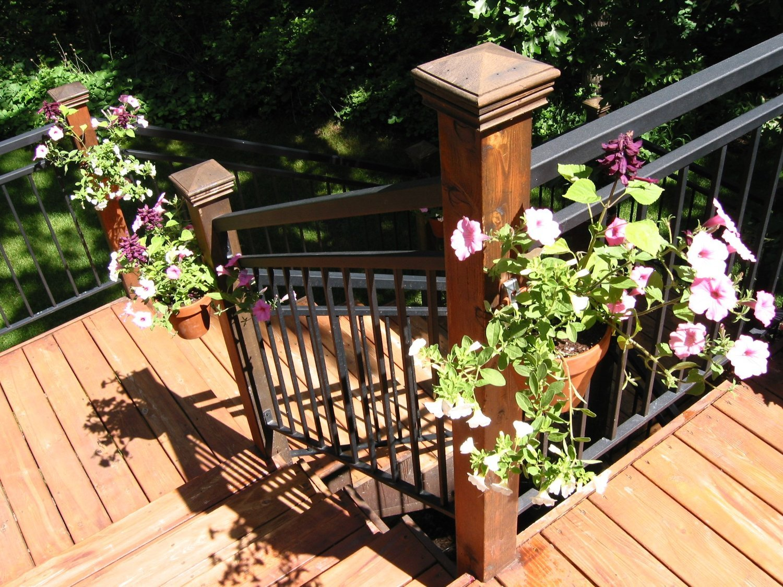 Amazon.com : Flower Pot Klips (12 Pack) : Plant Hooks : Patio ...
