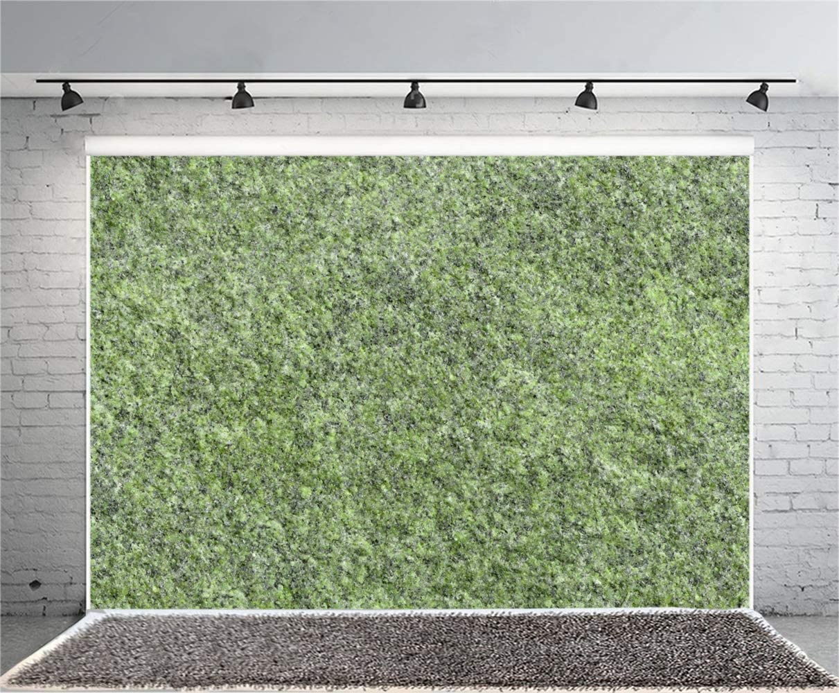 GoEoo 10x7ft Grunge Abstract Mossy Marble Texture Wall Vinyl Photography Background Rustic Mineral Wall Backdrops Child Kids Adult Pets Portrait Clothes Product Shoot Studio Photo Props