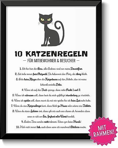 10 Witzige Katzenregeln Bild Mit Rahmen Hausordnung Fur Besucher