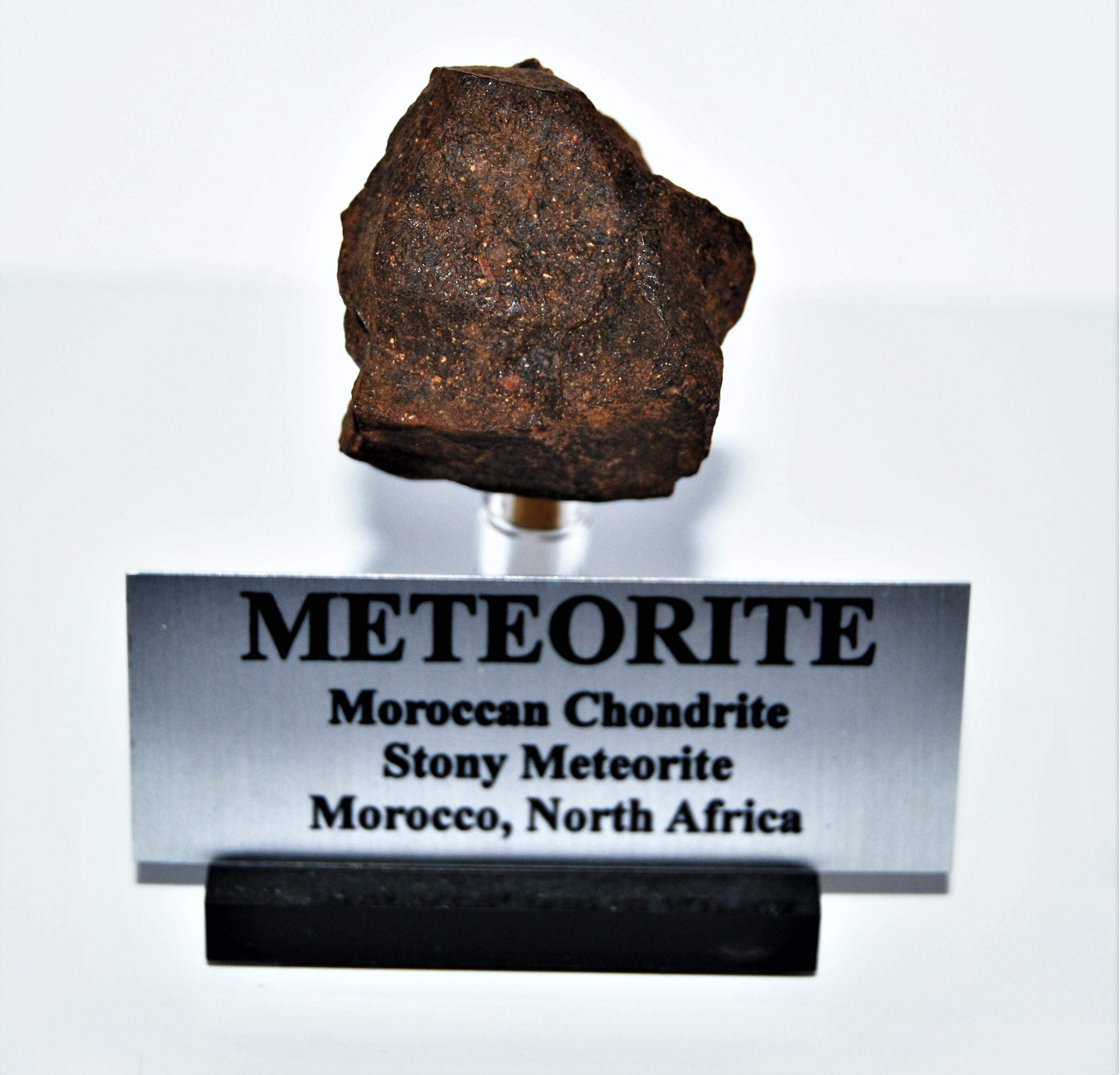 Fossils, Meteorites, & More Moroccan Chondrite 58.8 Grams w/Acrylic Display Stand, Label, COA #14307 7o