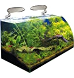 WAVE Box Vision 60 Cosmos Aquarium pour Aquariophilie