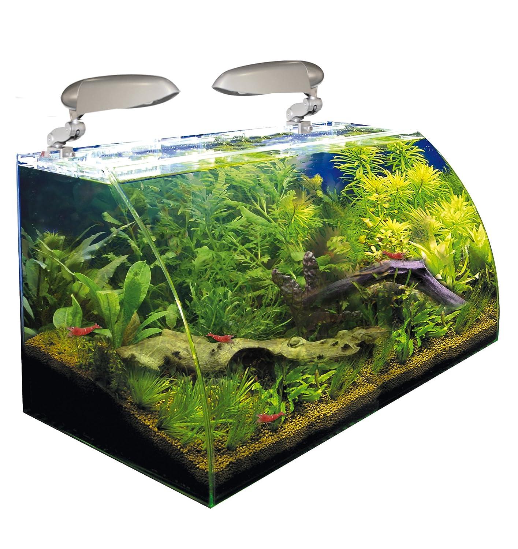 WAVE Box Vision 60 Cosmos Aquarium pour Aquariophilie Amazon