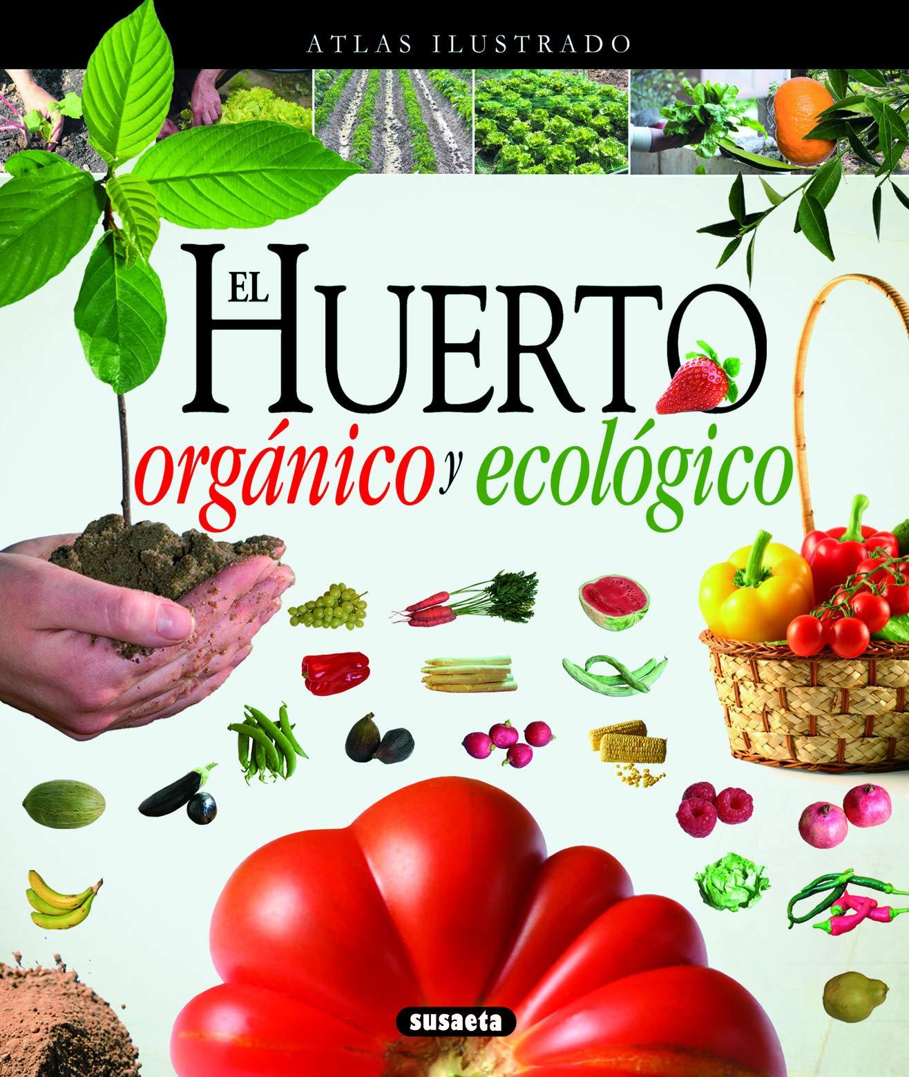 El huerto orgánico y ecológico de Equipo Susaeta