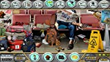Airport Terminal - Find Hidden Object Game [Download]