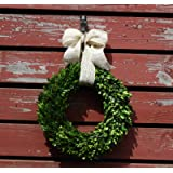 Preserved Garden Boxwood Wreath with Removable Burlap Bow-14""