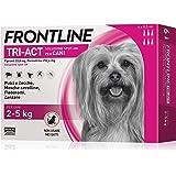 6 Pipette Frontline Tri-Act Spot-On per Cani XS (2 - 5 kg)