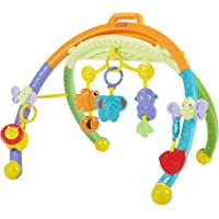 Fisher-Price Growing Baby Folding Activity Gym, Multi Color