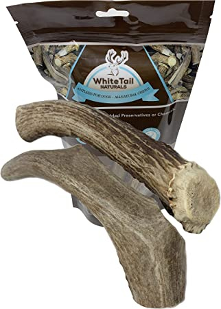 REAL Organic Whole Mule Deer Antler For Dog Chew Toy /& Treat Small Medium Large
