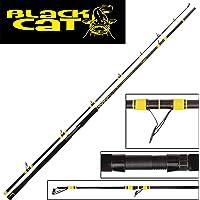 Black Cat Passion Pro DX Long Range–Caña