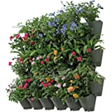 SELF Watering Vertical Wall Hangers with Pots Included - Wall Plant Hangers - Each Wall Mounted Hanging Pot has 3 Pockets - 36 Total Pockets in This Set - Self Watering Planter Set