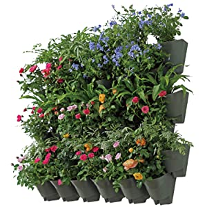 SELF Watering Indoor Outdoor Vertical Wall Hangers with Pots Included Wall Plant Hangers Each Wall Mounted Hanging Pot has 3 Pockets 36 Total Pockets in This Set Self Watering Planter 3 Year Warranty
