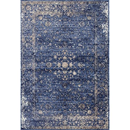 Blue And White Chinese Rugs: Blue Oriental Rug: Amazon.com