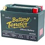 DELTORAN デルトラン バッテリーテンダー リチウムバッテリー LiFePO4 360CCA 360CLI