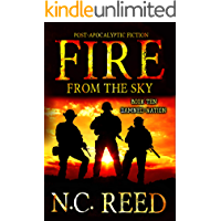 Fire From the Sky: Damned Nation book cover