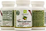 Real European Olive Leaf Extract