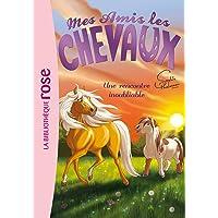 Mes amis les chevaux, tome 6 : Une rencontre inoubliable