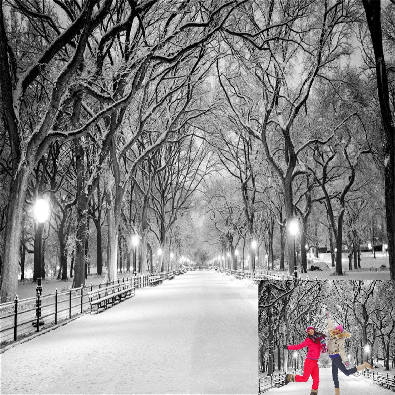 Kate 10x10ft winter wonderland street photography backgrounds frozen snowflake photo backdrop snow christmas backdrops for photographer