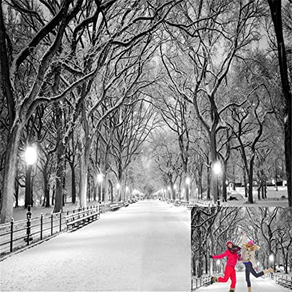 Snow For Christmas.Kate 10x10ft Winter Wonderland Street Photography Backgrounds Frozen Snowflake Photo Backdrop Snow Christmas Backdrops For Photographer