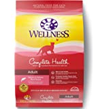 Wellness Complete Health Natural Dry Cat Food Salmon