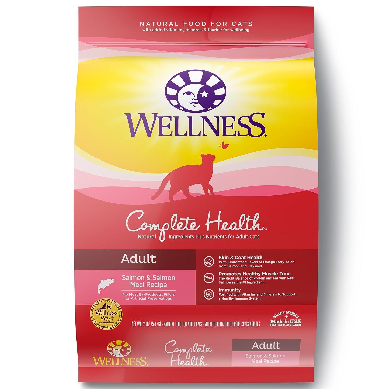 12-Pound Bag Wellness Complete Health Natural Dry Cat Food, Salmon & Turkey, 12-Pound Bag