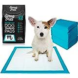 SmugPets - 50 empapadores para Entrenar Cachorros - 6 Capas - con atrayente y núcleo superabsorbente