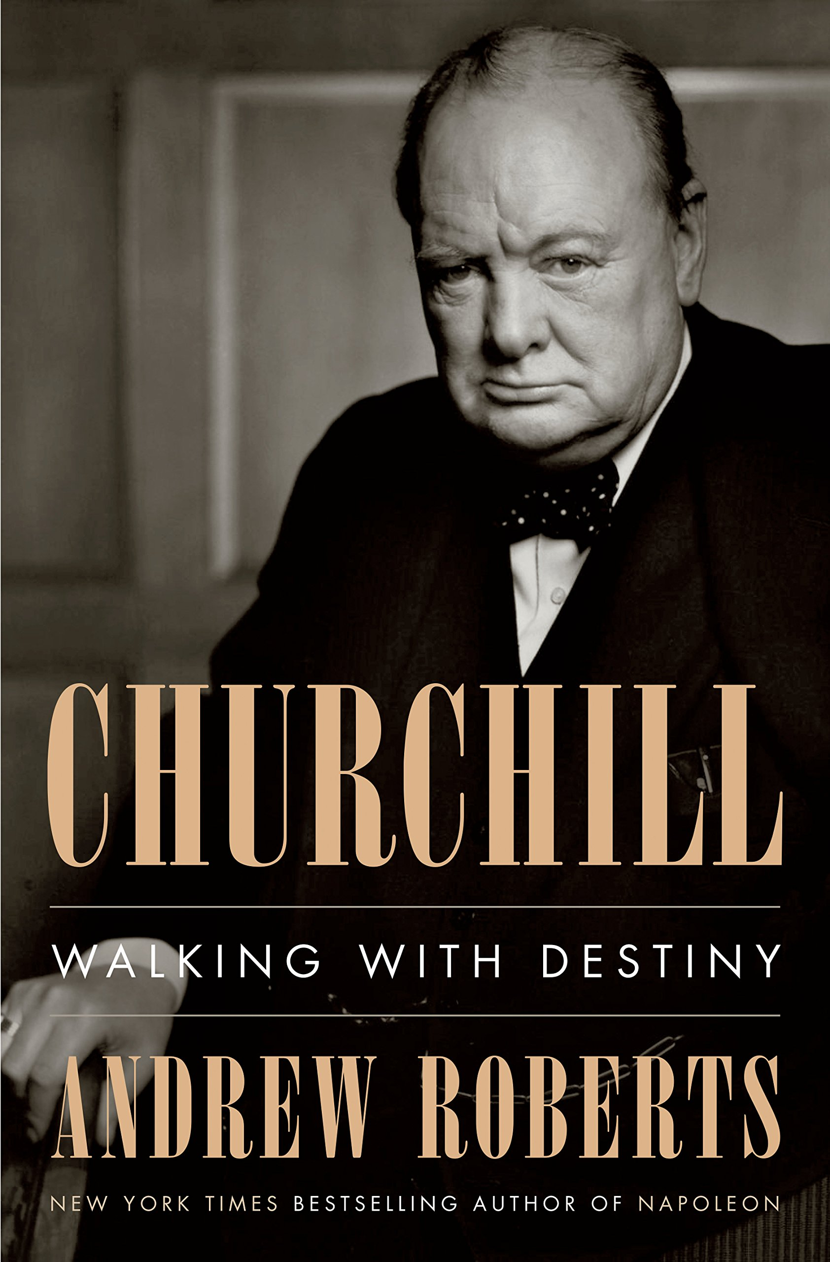 Image result for churchill walking with destiny book