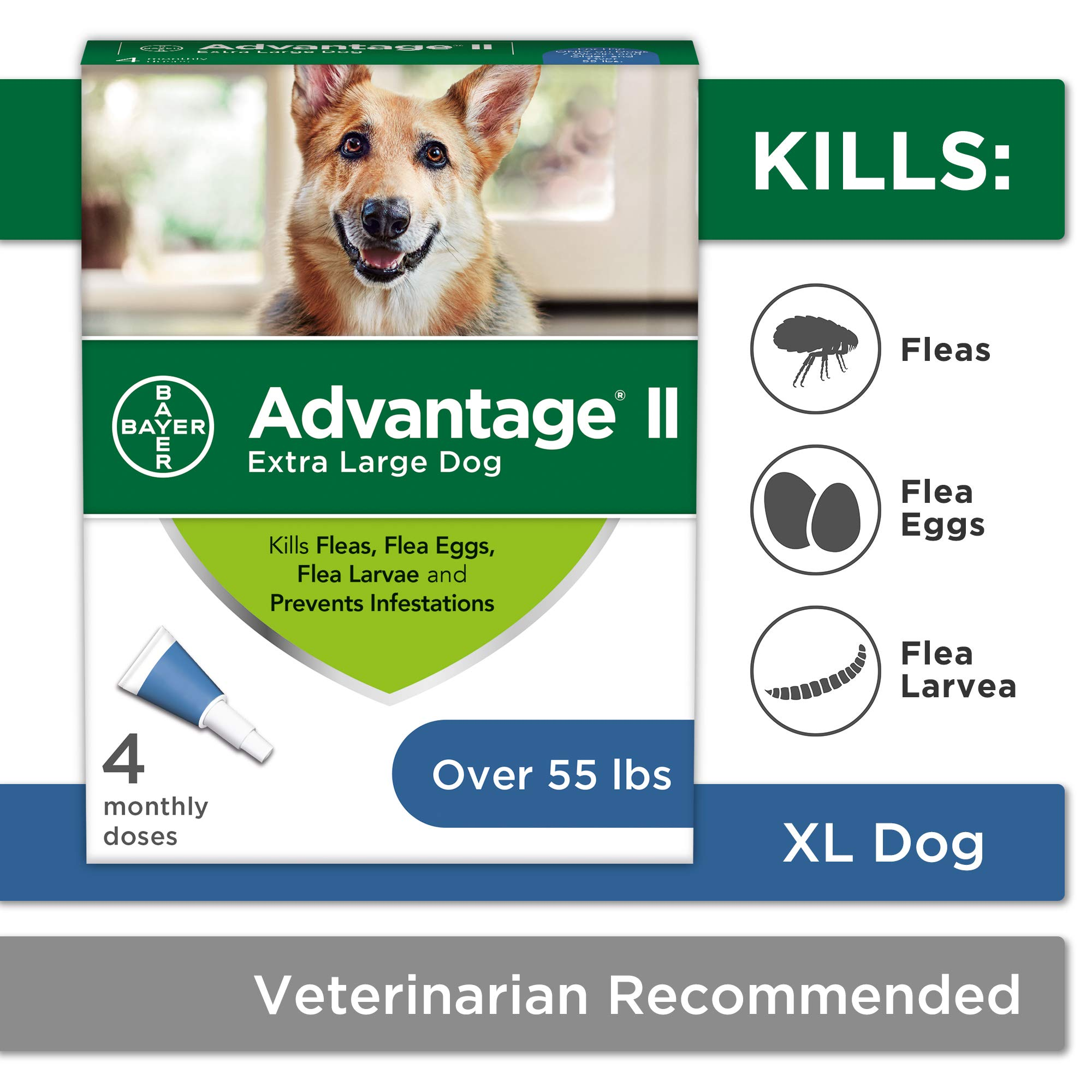 Flea and Lice Treatment for Dogs, Over 55 lb, 4 doses, Advantage II by Bayer Animal Health