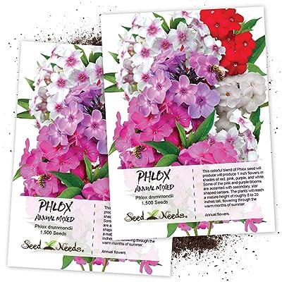 Seed Needs, Annual Phlox Mixture (Phlox drummondii) Twin Pack of 1, 500 Seeds Each : Garden & Outdoor