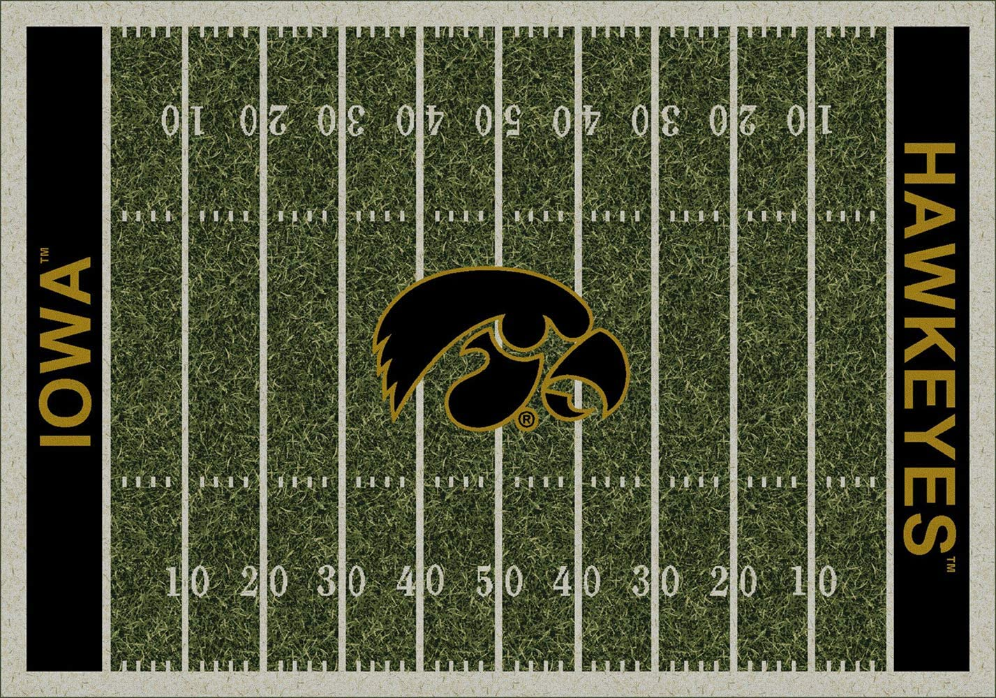 Iowa Hawkeyes NCAA College Home Field Team Area Rug 5 4 x7 8