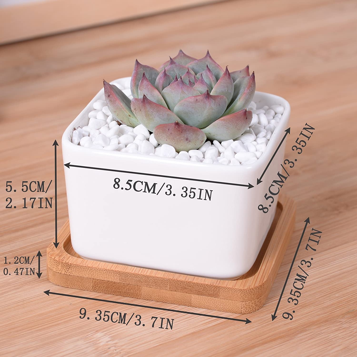 Amazon.com: ROSE CREATE 4 Pcs 3.5 Inches White Bonsai Pots with ...