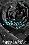 Salvage (Salvage Duet Book 1)
