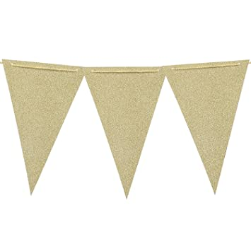 Amazon.com: Ling\'s moment 10 Feet Paper Triangle Banner Flags ...