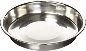 QT Dog Puppy Stainless Steel Pan, 10
