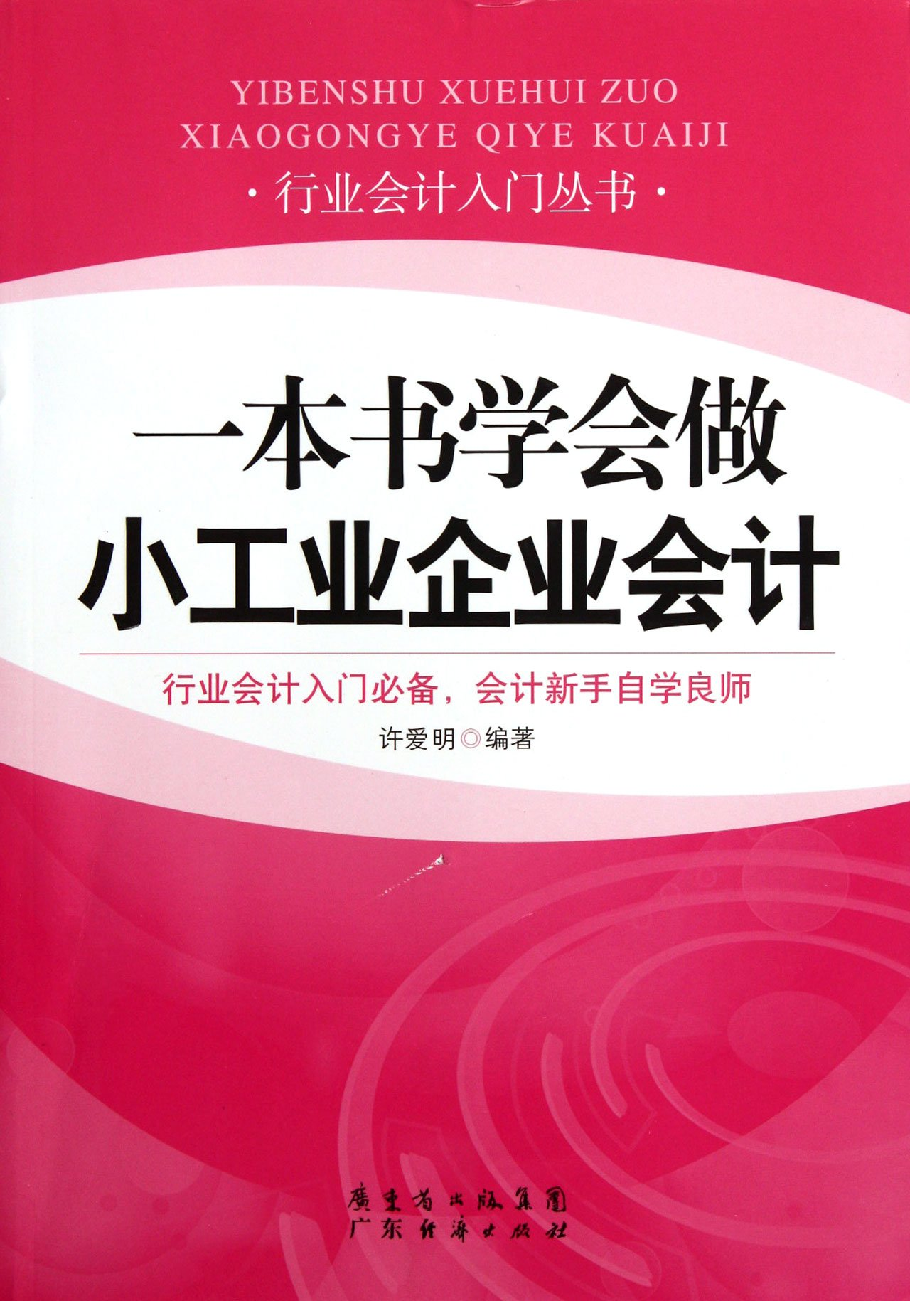 Learn Accounting for Small Industrial Companies from One Book (Chinese Edition) PDF