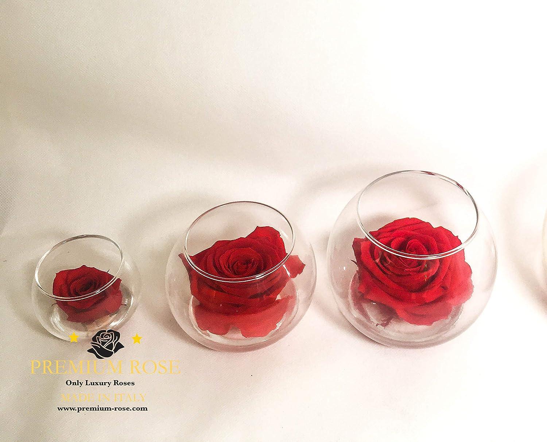 Boule Vetro con Rosa stabilizzata Rossa 8cm in Vaso Vetro da 10cm premium-rose Boule in Vetro con Rosa Stabilizzata Rossa 8cm