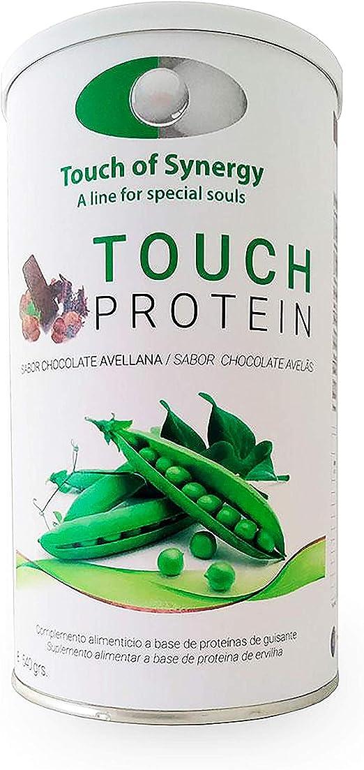 Touch Protein chocolate con avellanas: Amazon.es: Salud y ...