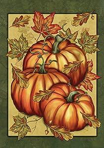 Toland Home Garden Pumpkin Spice 12.5 x 18 Inch Decorative Fall Autumn Leaves Gourd Garden Flag