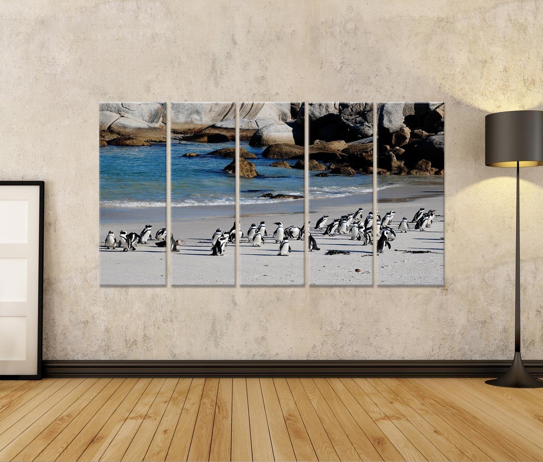 Islandburner Bild Bilder Auf Pinguine Leinwand 5 Teilig Pinguine Auf