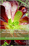 The Complete Guide to Succulent Propagation