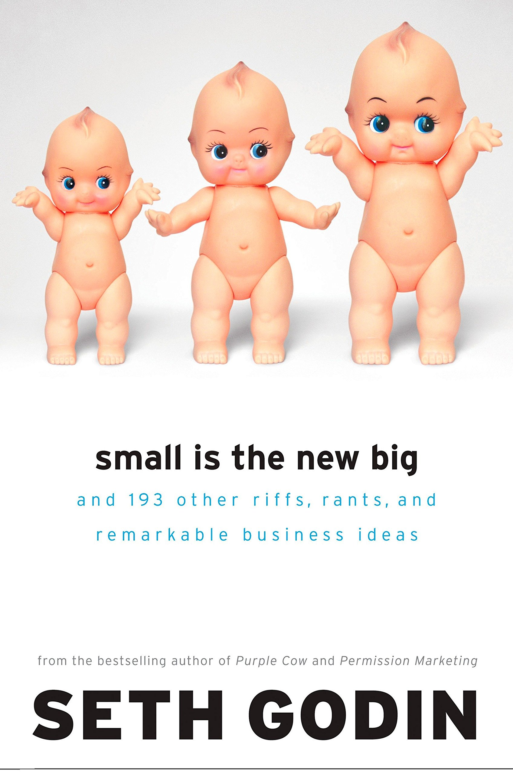 Small Is the New Big: and 183 Other Riffs, Rants, and Remarkable ...