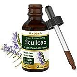 Horbaach Scullcap Liquid Extract | 2 fl oz | Super Concentrated | Alcohol Free, Vegetarian, Non-GMO, Gluten Free | Skullcap H