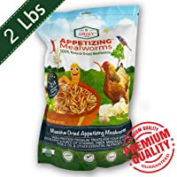 Dried Mealworms -2 LBS- 100% Natural Non GMO Mealworms -Food For Chicken- High Protein Mealworms for Bird, Duck Food, Bearded Dragon Diet, Gecko Food, Turtle Food, Lizard Food - Bulk Mealworms 2 LBS