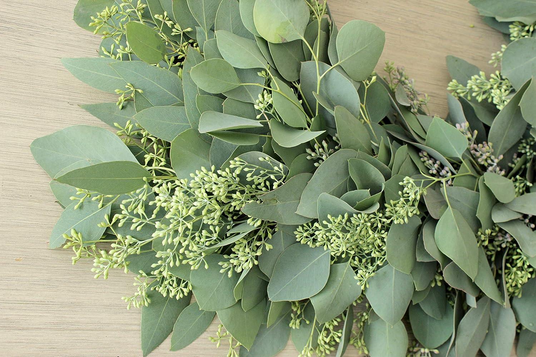 Hoidays Home Wedding Seeded Eucalyptus Greenery Wreaths for Front Door Spring /& Summer D/écor Fresh Handmade Square Wreath Church Door 20 inches