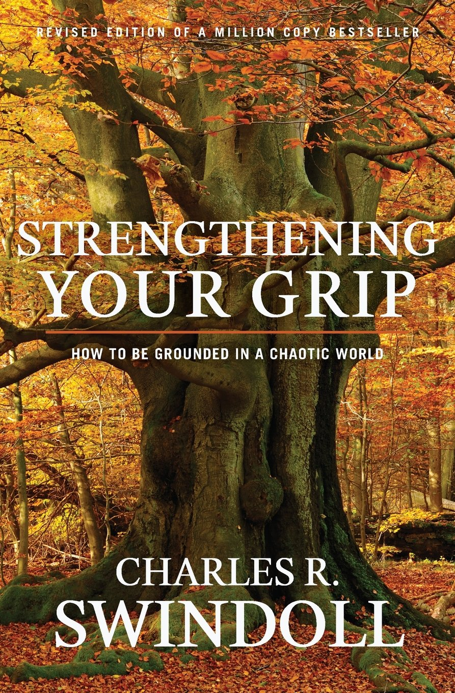Strengthening Your Grip Grounded Chaotic product image