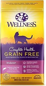 Wellness Complete Health Natural Grain Free Salmon & Herring Indoor Dry Cat Food, 5.5 Pound Bag