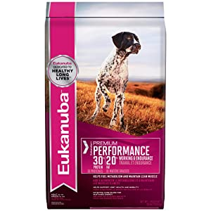 Eukanuba Premium Active Adult Dry Dog Food