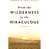 From the Wilderness to the Miraculous (English Edition)