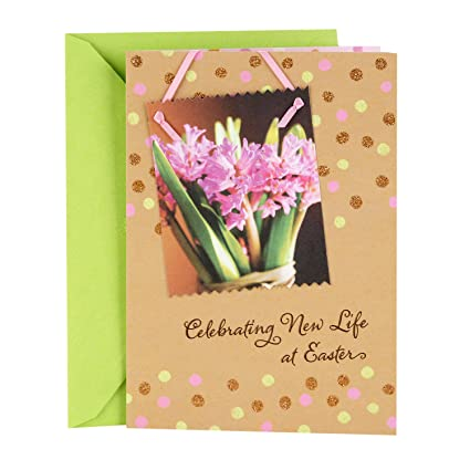 Amazon dayspring religious easter greeting card new life new dayspring religious easter greeting card new life new beginnings m4hsunfo