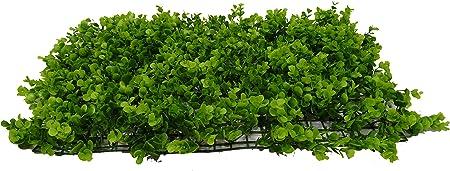 SZ Plancha Alfombra de Césped Artificial 60 * 40cm Jardín Vertical Decoración Interior Pared Hierba (EU Grande): Amazon.es: Hogar